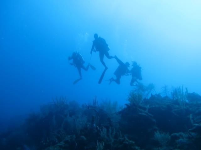 Scuba in Belize